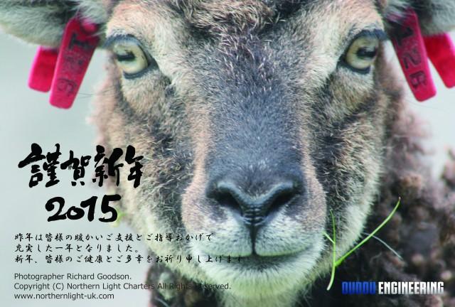 Japanese New Year card Soay sheep