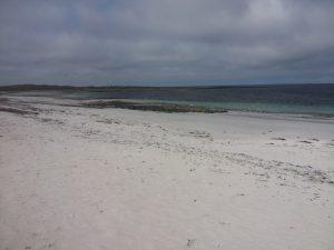 Caenn Iar Beach, Monachs