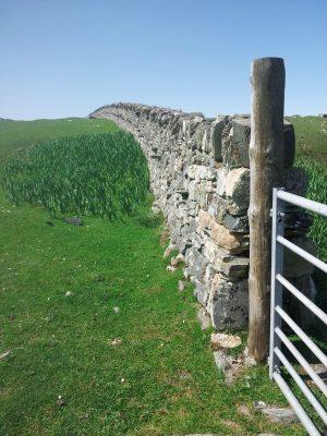 Boreray Wall