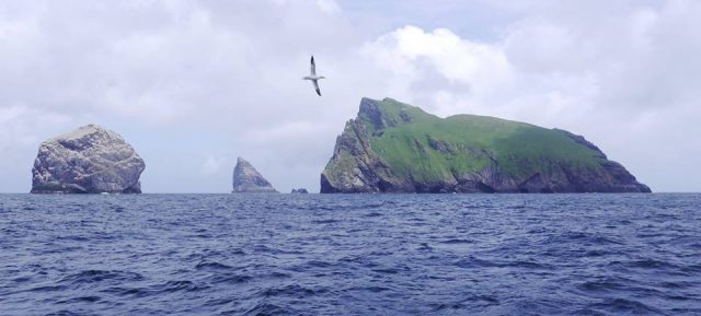 Stacs and Boreray by Steve Poole